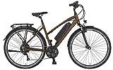 Prophete ENTDECKER e9.6 Trekking E-Bike 28' Herren...