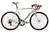 KS Cycling Euphoria