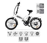 Nilox E-Bike X1 New, Elektrisches Fahrrad Faltend,...