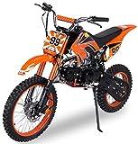 Actionbikes Motors Midi Kinder Jugend Crossbike JC125...