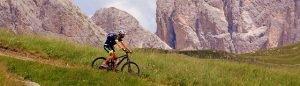 Ein Radfahrer fährt eine leichte Abfahrt mit seinem Mountainbike herunter. Die Landschaft ist voller Gras und im Hintergrund sind Berge zu sehen.